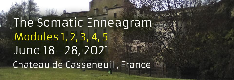 Somatic Enneagram Certification Program in France